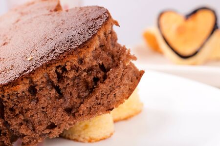Selective focus on the chocolate cake Stock Photo - 17294995