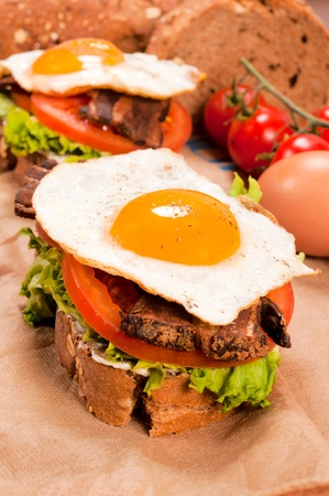 Fried egg on the fresh dark bread photo