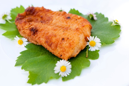 Selective focus on the fried catfish Stock Photo - 19577125
