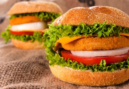 Selective on the front fishburger with vegetables  photo