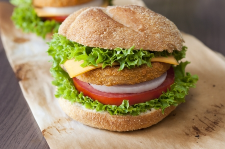 Close up to fishburger with fresh organic vegetables  photo