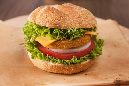 hamburguesa de pollo: Hamburguesa de pescado fresco con verduras Foto de archivo