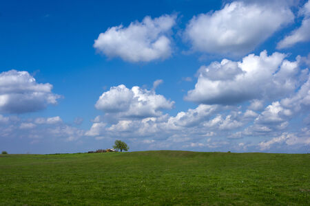 meadowland: Green empty field and white fluffy clouds