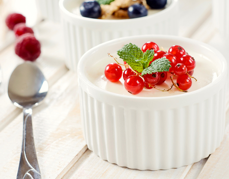 blancmange: Panna cotta dessert with berry fruit.Selective focus on the cup with red currant