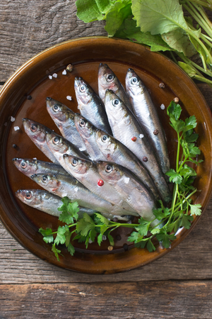 freisteller: Raw smelt fishes in the plate from above Stock Photo
