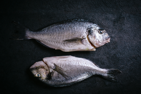 demersal: Couple of glithead fish on black background