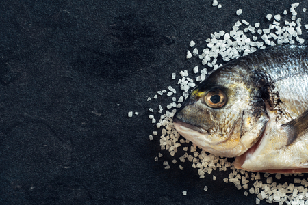 overfishing: Dorada fish head on salt with blank space on the left side Stock Photo