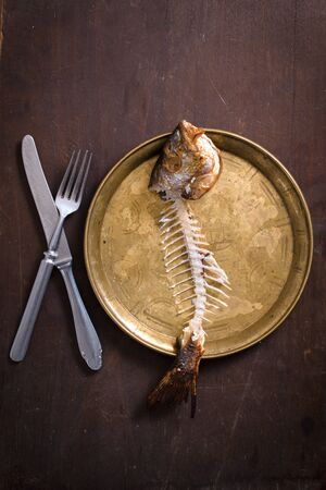 dorade: Fish bones in the old metal plate from above,blank space Stock Photo