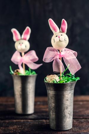 cake pops: Bunny cake pops,Easter concept,selective focus