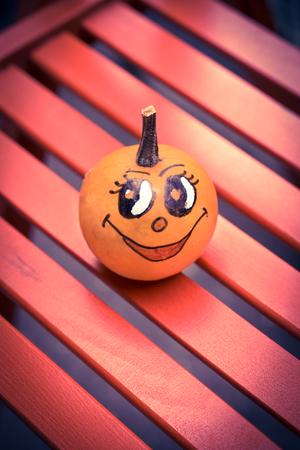 mini farm: Happy face little pumpkin,selective focus