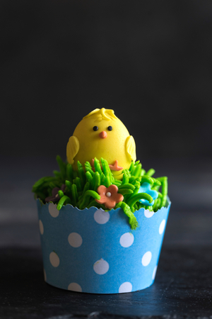 Single Easter cup cake with little chicken,selective focus