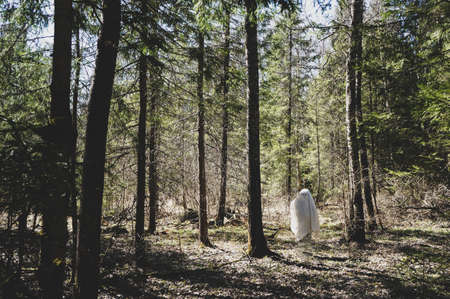 soaring ghost in a white mantle in an enchanted forest