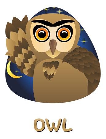 owl illustration: Illustration of cute cartoon owl