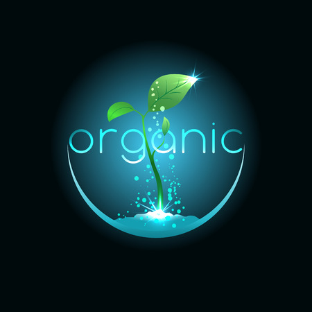 prudence: Organic food, illustration for agriculture company or environment organization