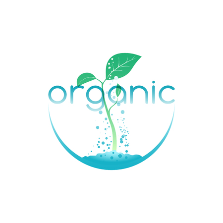 Organic food, illustration for agriculture company or environment organization