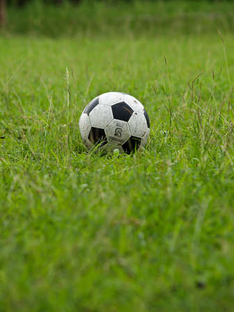 A soccer ball on the field  Stock Photo