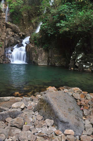 mahseer: A school of Mahseer Barb fish in Pliew Waterfall National Park, Chanthaburi, Thailand