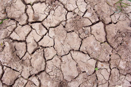 Cracked soil texture Banco de Imagens