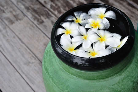 Plumeria flower in jar for spa decoration Stock Photo