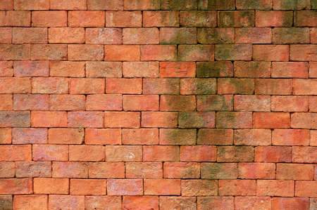 Red brick wall with green moss texture background  Banque d'images