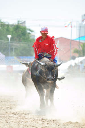Chonburi, Thailand - OCTOBER 29, 2012: Rider smiles when ride on his buffalo because of win the racing at World Buffalo Carnival. Stock Photo - 16094399