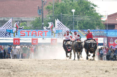 Chonburi, Thailand - OCTOBER 29, 2012: Riders and their Buffalo are racing to win in World Buffalo Carnival.