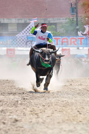 Chonburi, Thailand – OCTOBER 29, 2012: Rider and his Buffalo are racing to win in Buffalo Racing Festival.