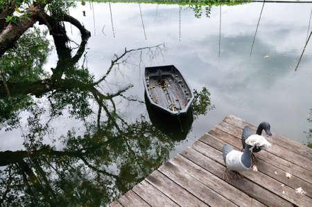 Metal ducks on wood corridor near river in chic scene