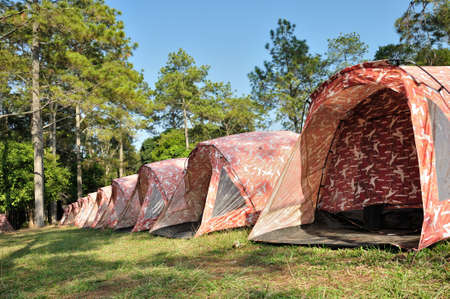 phukradueng: Camouflage tents are erected for tourist at Phukradueng National Park, Loei, Thailand