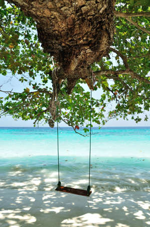 A wood swing on the beach at Similan island, Thailand  photo