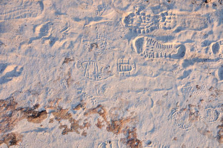 shoeprint: Track of shoeprints in the sandstone ground at National Park