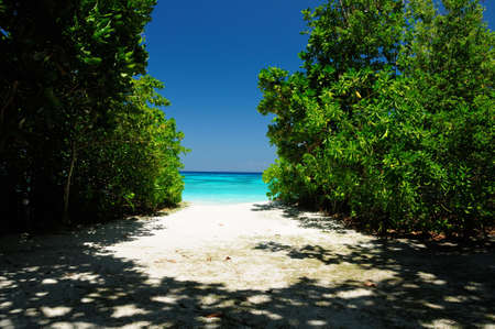 The way to paradise with white sand beach and clear blue andaman sea, Similan island, Thailand