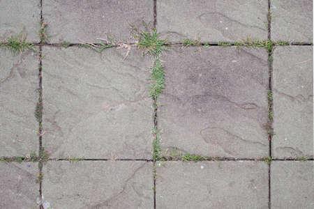 exposed: Exposed concrete block floor with grass. Stock Photo