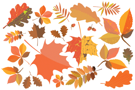 craquelure: Set of colorful autumn leaves with geometric texture and craquelure