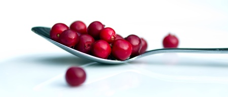 cranberry fruit: Cranberry Stock Photo
