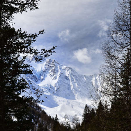 Picture of the Disgrazia hanging glacier in Chiareggio Valley in Rhaetian Alps