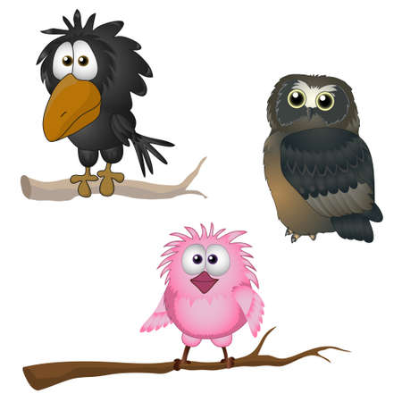 aves: engra�ado vetor ilustra��o do p�ssaro coruja corvo pardal Ilustra��o