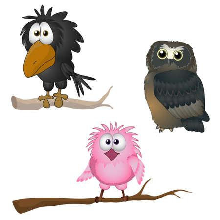 cartoon: funny bird ilustración vectorial lechuza cuervo gorrión