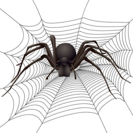big spider in the web. Vector illustration Ilustracja