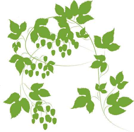 abstract background with green leaves. vector illustration Vector