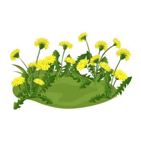 glade met gele bloemen. vector illustratie