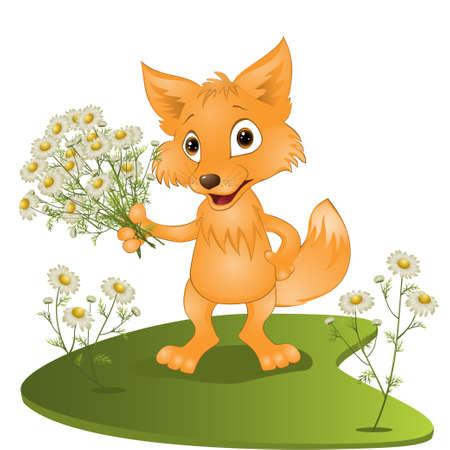 jonge vos met een boeket van camomiles. illustraties