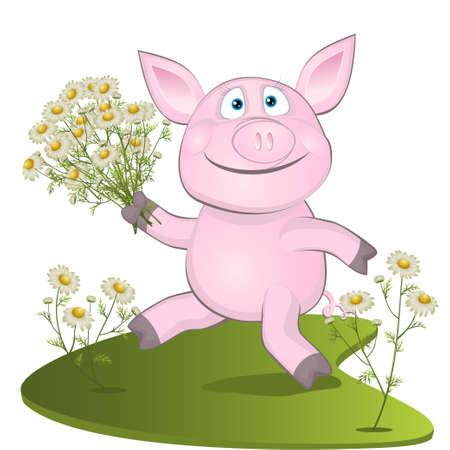 varken met een boeket van camomiles. illustraties Stock Illustratie