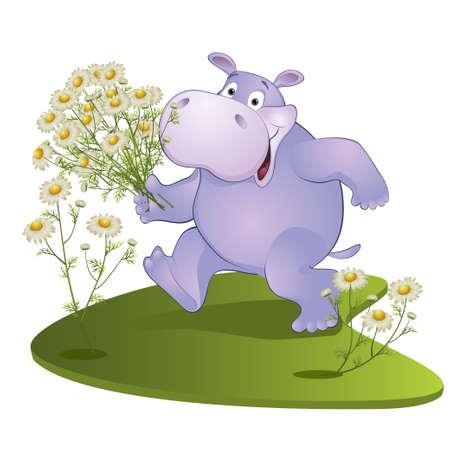 nijlpaard met een boeket van camomiles