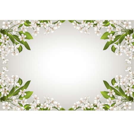 frame uit witte bloemen en groene bladeren Stock Illustratie