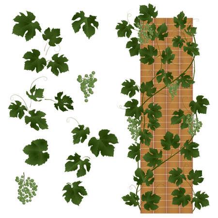 abstracte achtergrond met groene bladeren. vector illustratie Stock Illustratie