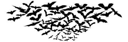 Halloween flying bats. Decoration element from scattered silhouettes. Vector illustration Иллюстрация
