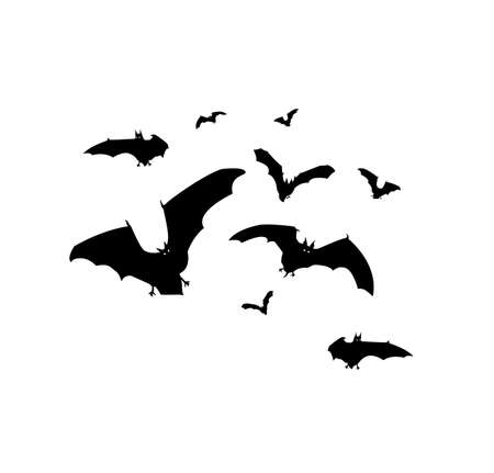 Bats flying around simple background vector illustration