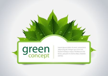 Green concept design, fresh leafs and water dorps Illustration