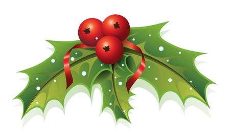 frutos rojos: Esta imagen es un archivo vectorial que representa una planta de acebo. Vectores